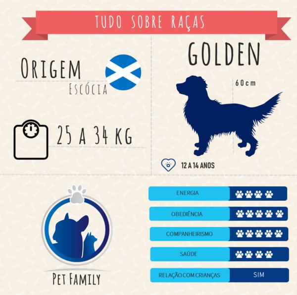 infografico golden